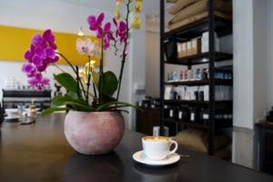 Your walking guide to specialty coffee in Berlin Kreuzberg part 2_nano kaffee_cafe view