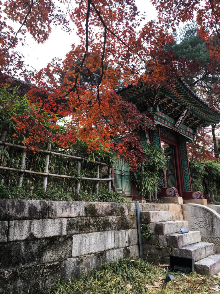 Specialty Coffee in Seoul_changdeokgung palace_gate